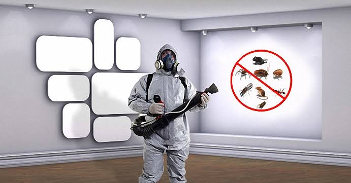 مكافحة الحشرية المنزلية بمبيدات مرخصة عالميا بالضمان
